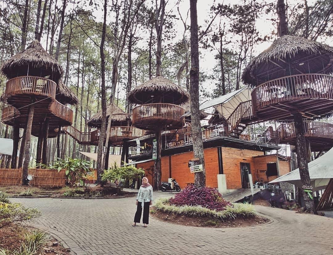 10 Gambar Kopeng Treetop Adventure Park 10 Harga Tiket Masuk Sky