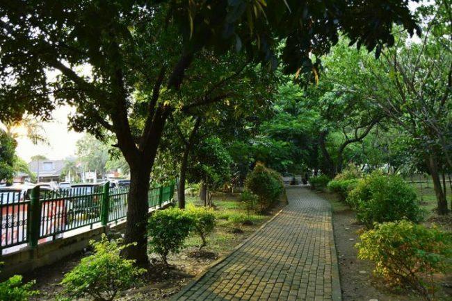 10 Foto Hutan Kota Bekasi Rute Jalan Menuju Lokasi Biaya Tiket Masuk Jejakpiknik Com