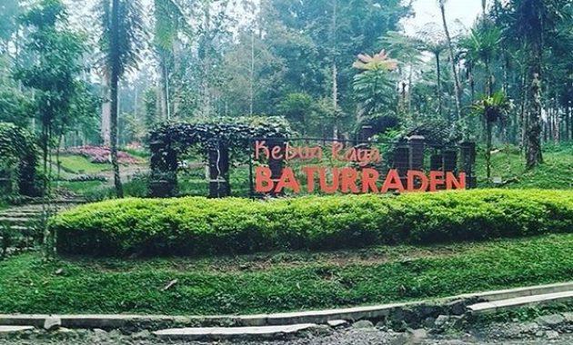 10 Gambar Kebun Raya Baturaden Purwokerto Harga Tiket Masuk Lokasi Alamat Jam Buka Tutup Nomer Telefon Jejakpiknik Com