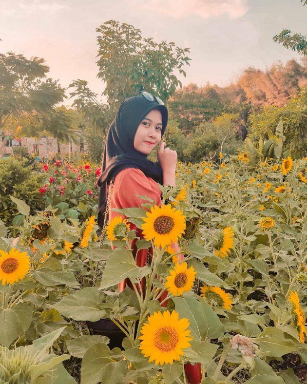 10 Gambar Taman Harmoni Surabaya Keputih Harga Tiket Masuk Dan Sejarah Latar Belakang Berdirinya Jejakpiknik Com